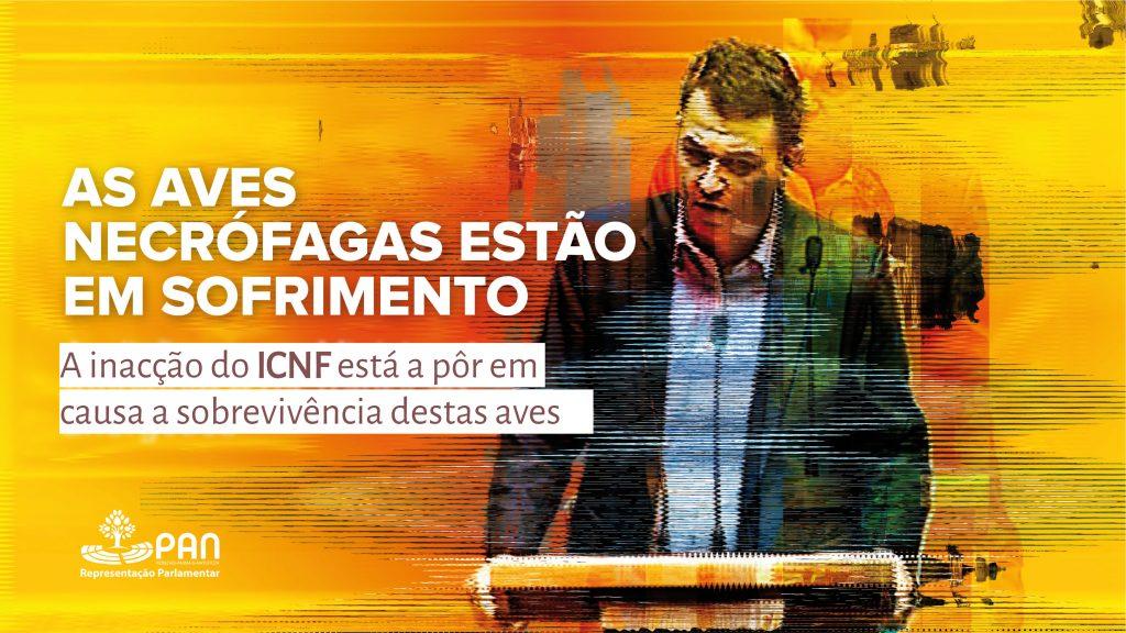 Imagem da Intervenção de André Silva no Parlamento sobre o Sofrimento das Aves Necrófagas
