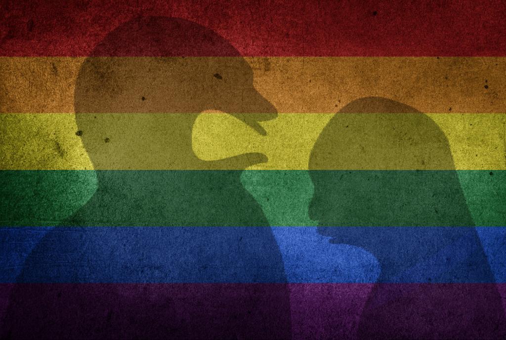 PAN defende a inclusão da comunidade LGBTI+ na intervenção junto das vítimas de violência(s)