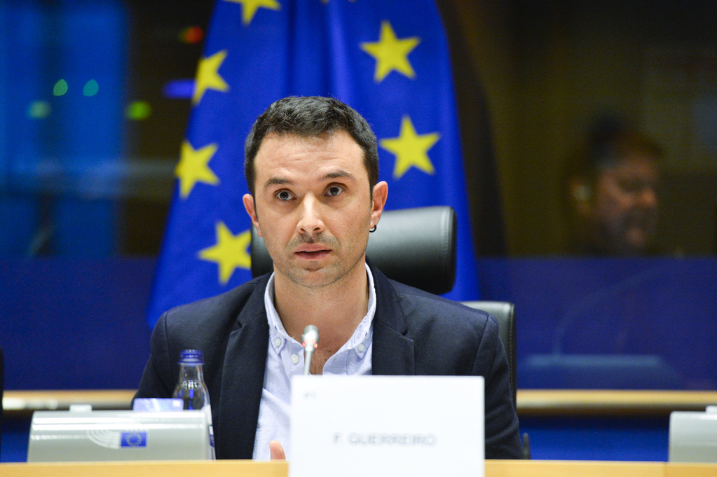 Francisco Guerreiro no Parlamento Europeu