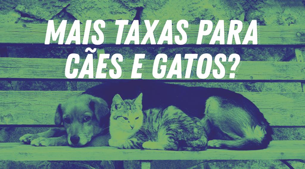 Na imagem estão um cão e um gato, com o título: mais taxas para cães e gatos?