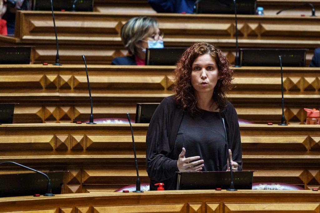 Bebiana Cunha no Plenário
