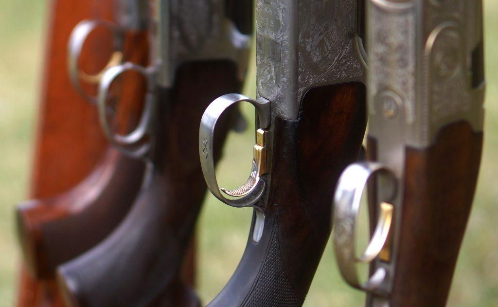 Caça Armas
